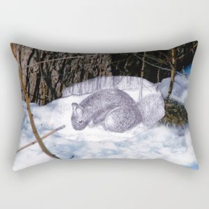 lovely-squirrel-in-montreal-rectangular-pillows